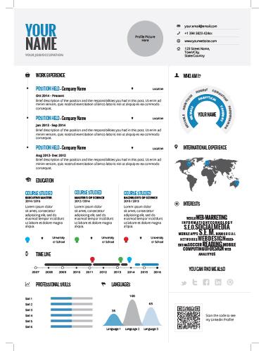 infographic resume 1